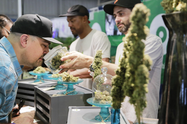 南加大麻節刺激經濟,社會爭議大。網絡圖