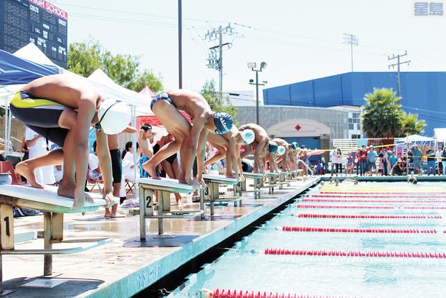 今年「世界史維會盃」游泳大賽高達1300人次。記者梁穎欣攝