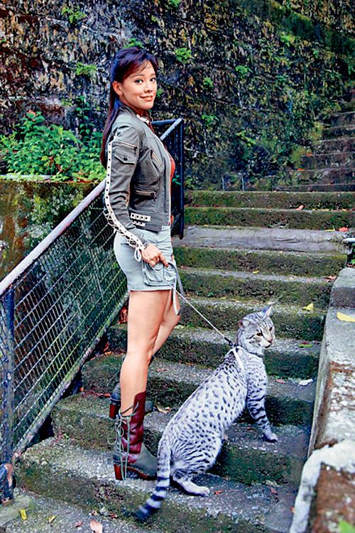 女藝人郭秀雲曾養有一頭豹貓。