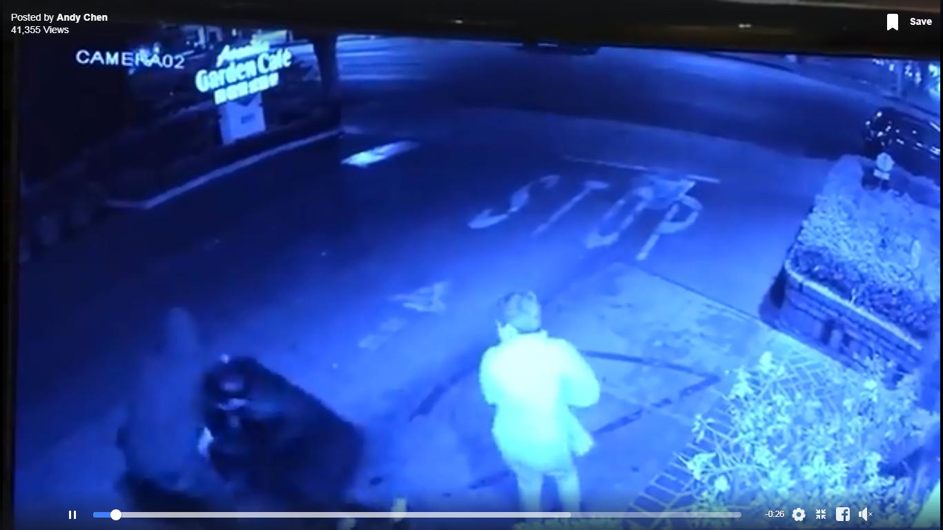 劫匪忽然從停車場後方衝出搶女子皮包(左),當時右方的同行男子還沒反應過來。錄像由戴守真提供