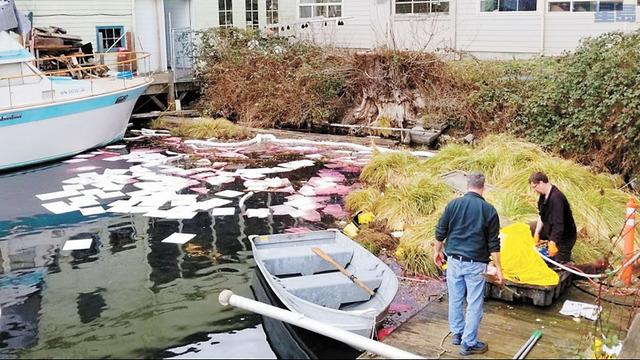 波他格灣發生柴油洩漏。電視截圖