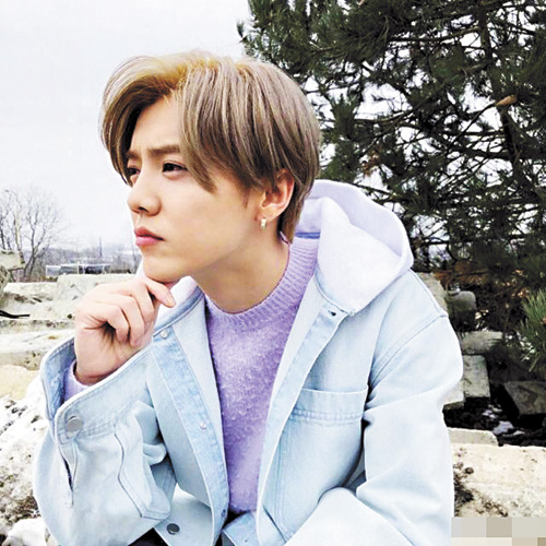 鹿晗身穿紫色毛衣,藍色外套。網上圖片