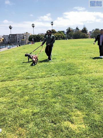 l 涉案男子與咬傷人的兩頭比特犬在逃離現場前被拍下的照片。三藩市警方