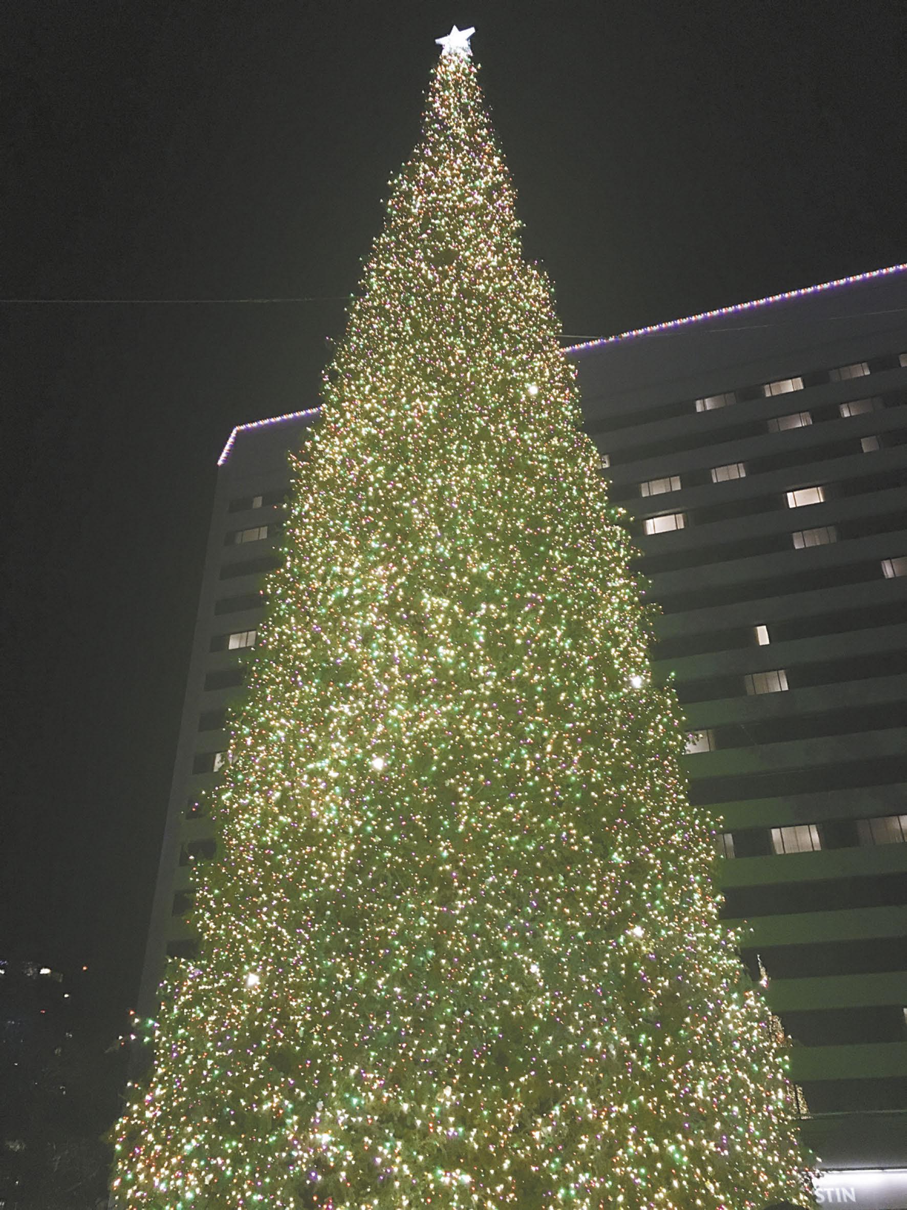 南海岸廣場15日為大型聖誕樹點燈,帶來喜慶與祝福。記者黃品瑄攝