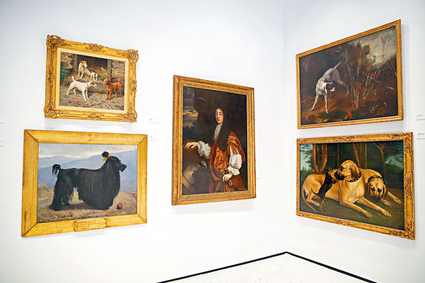 博物館內設有大量與狗隻相關的展品。 美聯社