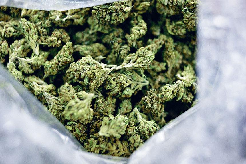 有支持者擔心,紐約將步新州後塵,因細節爭議拖垮大麻合法化進程。 Jenna Schoenefeld/紐約時報