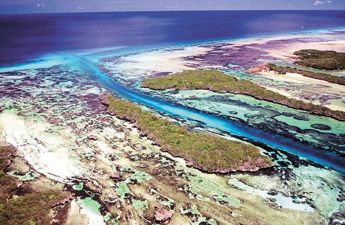 白喉斑秧雞是生活在阿爾達布拉環礁(圖)上的物種。 路透社/網上圖片