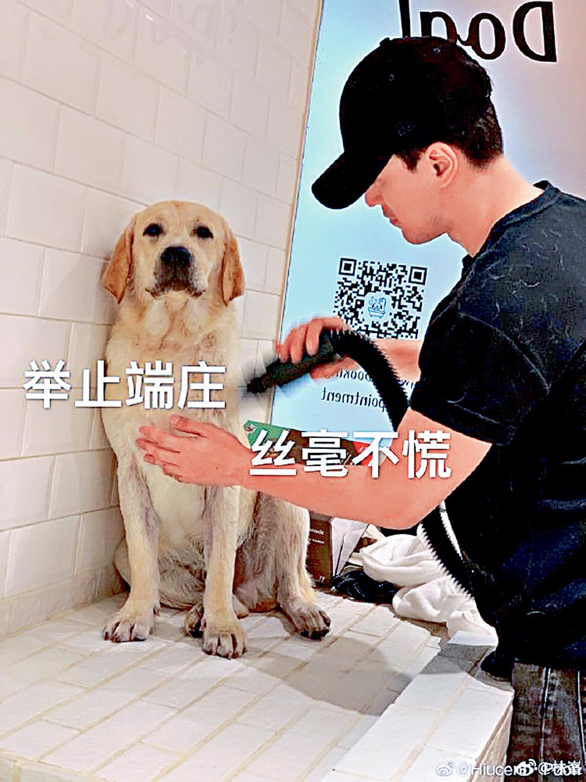 ■林峯昨日於微博分享親自為愛犬Yogurt沖涼吹毛。