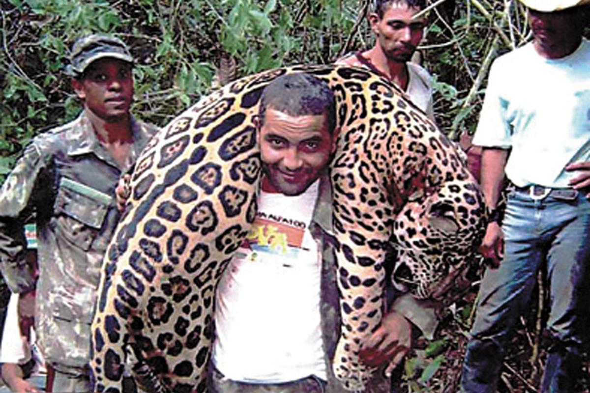 弗雷爾身上扛著美洲虎。網上圖片