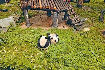 兩隻大熊貓被命名為「四海」、「一家」。