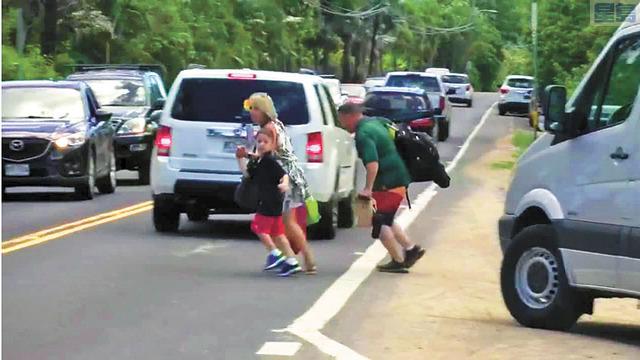 為看海龜遊客亂過馬路。Hawaii Now視頻截圖