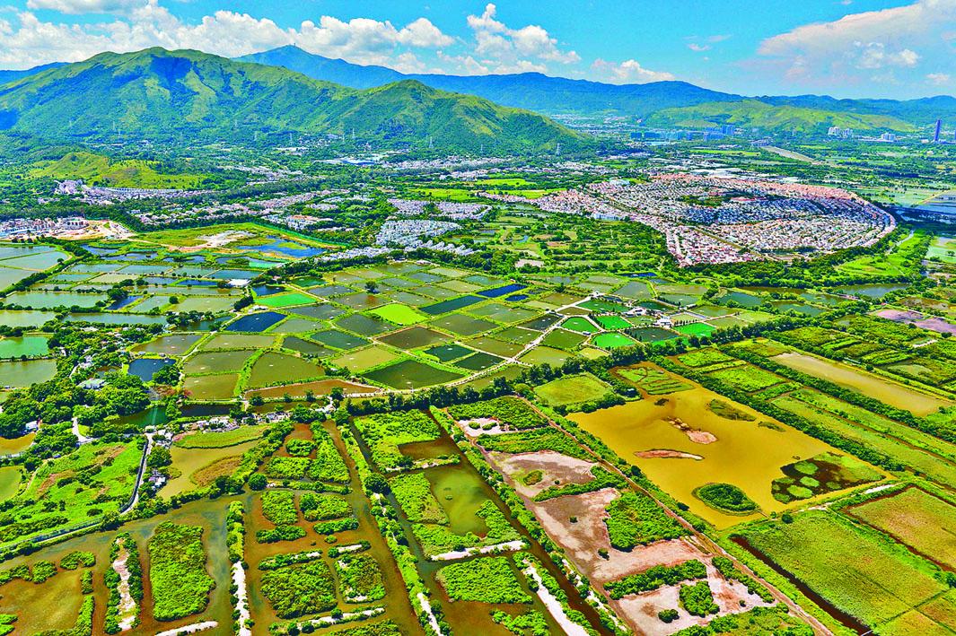 盛傳政府有意採《收回土地條例》,加快徵收新界農地興建公屋。