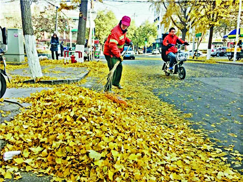 因領導要求街道看不見落葉,環衞工人不斷打掃。