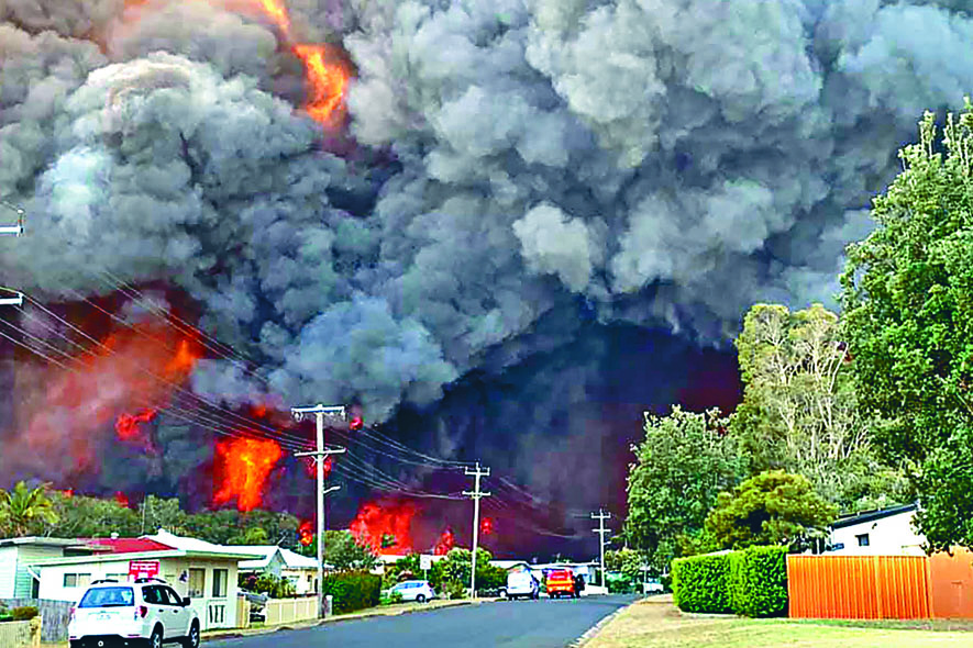 新南威爾斯叢林大火逼近哈靈頓住宅區。 法新社