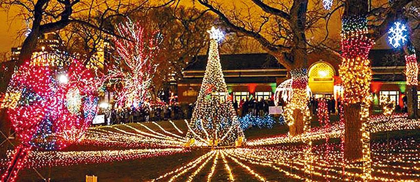 林肯公園的聖誕燈飾絢麗燦爛,入場完全免費。州街上的梅西百貨旗幟店,象徵著聖誕佳節即將降臨人間的長號已經高高掛上。