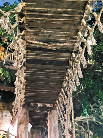繩索橋橋下的木頭板片應聲斷裂。DisneyDragon 推特照片