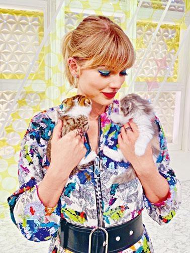 Taylor Swift昨日上日本節目時,見到兩隻貓仔即愛不釋手,更想帶返美國。