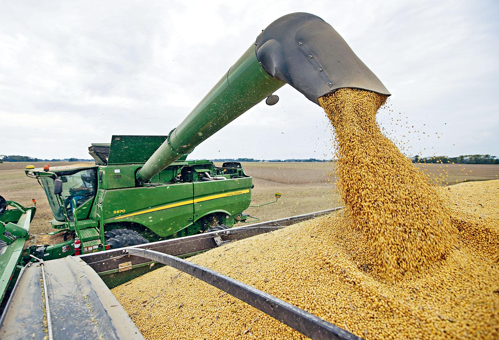 中國企業已根據國內需求,採購一定數量美國大豆及豬肉等商品  。 資料圖片