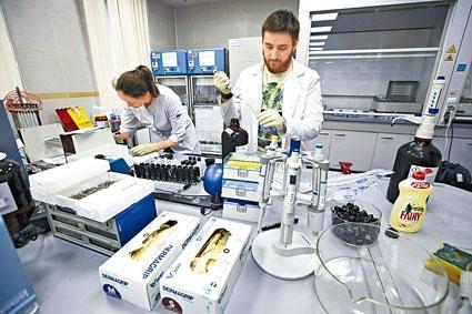 俄羅斯國家禁藥檢驗實驗室。