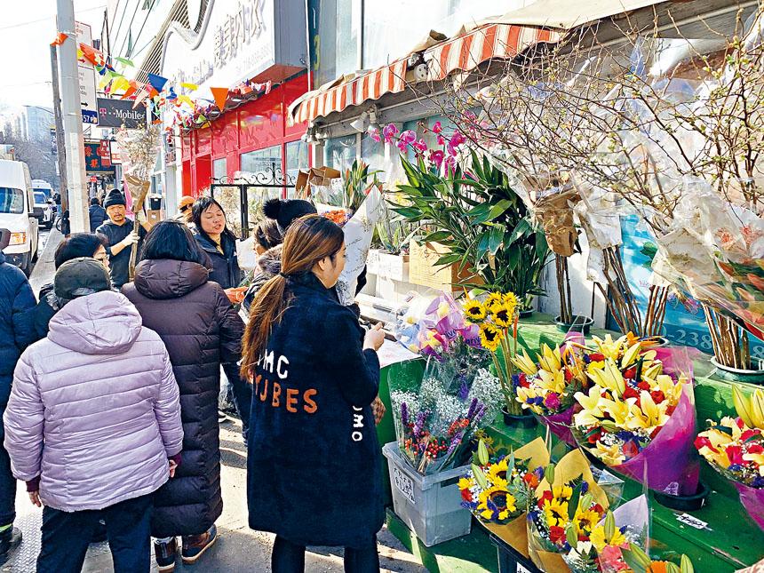 中國大江南北地區華人過新年習俗有不同,但傳統習俗相同是,購買鮮艷奪目年花過新年,法拉盛的花市擠滿人。