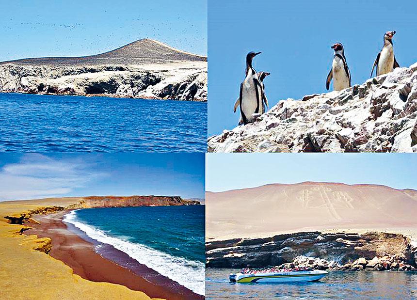 沿途的中南美州風景。