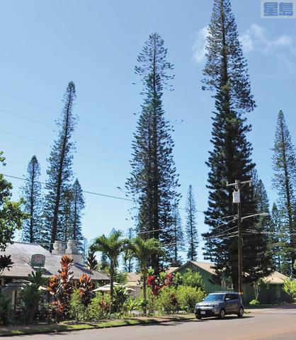 Pulama Lanai公司有意收購拉奈島發電廠和電網,轉為可再生能源。Pulama Lanai