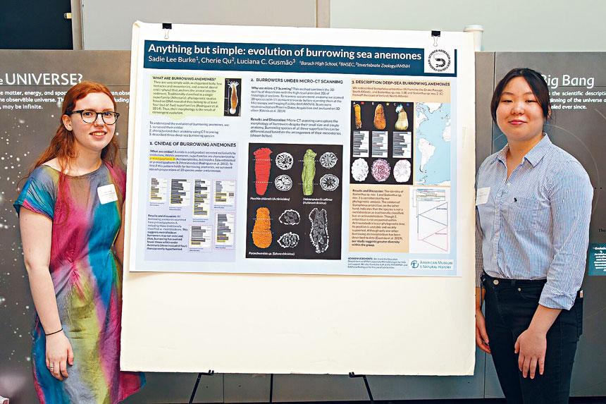 高中生曲雪莉(右)參與研究,發現新型海葵生物。美國自然歷史博物館圖片