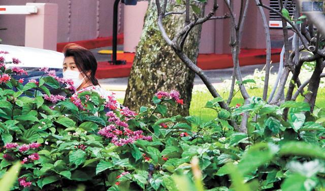 夏威夷旅遊業大受疫情影響。圖為檀香山一居民戴口罩出門。美聯社