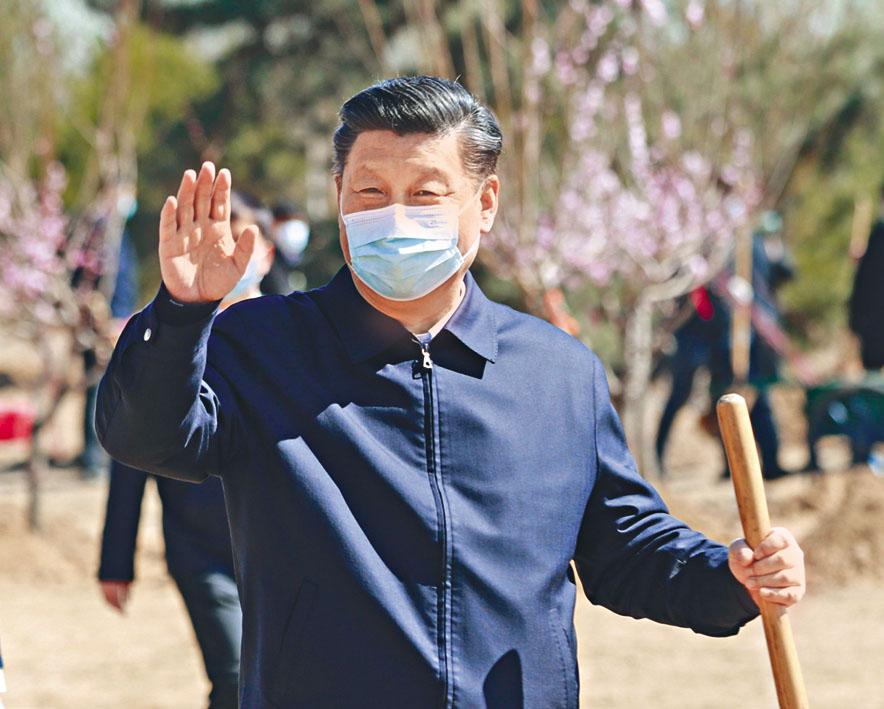 習近平等國家領導人昨日在北京植樹。