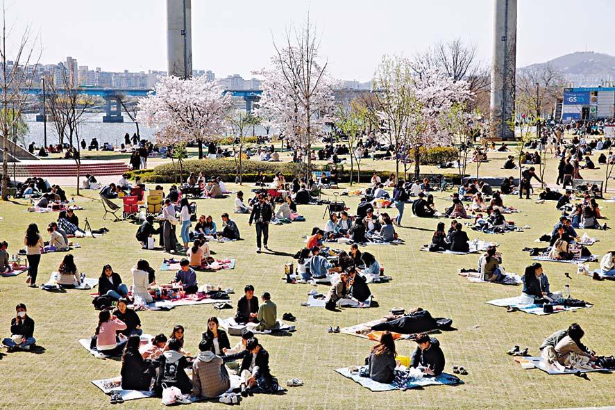 大批民眾上周六在首爾漢江公園野餐。 路透社