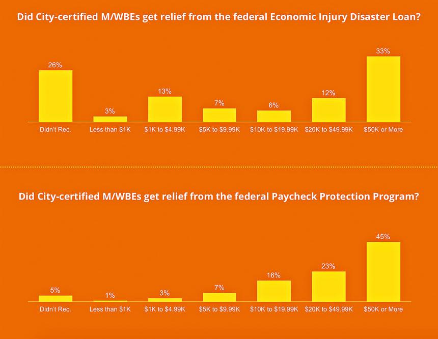 女性與少數族裔企業主反應收到濟傷害災難貸款(EIDL)和與薪資保護計劃(PPP)情況。