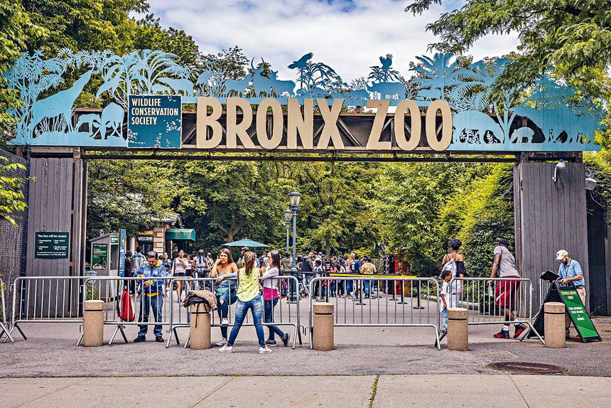 紐約市4間動物園和紐約水族館本月24日將對公眾開放。Tony Cenicola/紐約時報