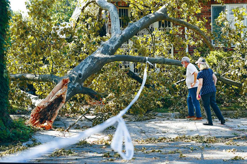 電線桿及樹木吹塌的情況嚴重。美聯社