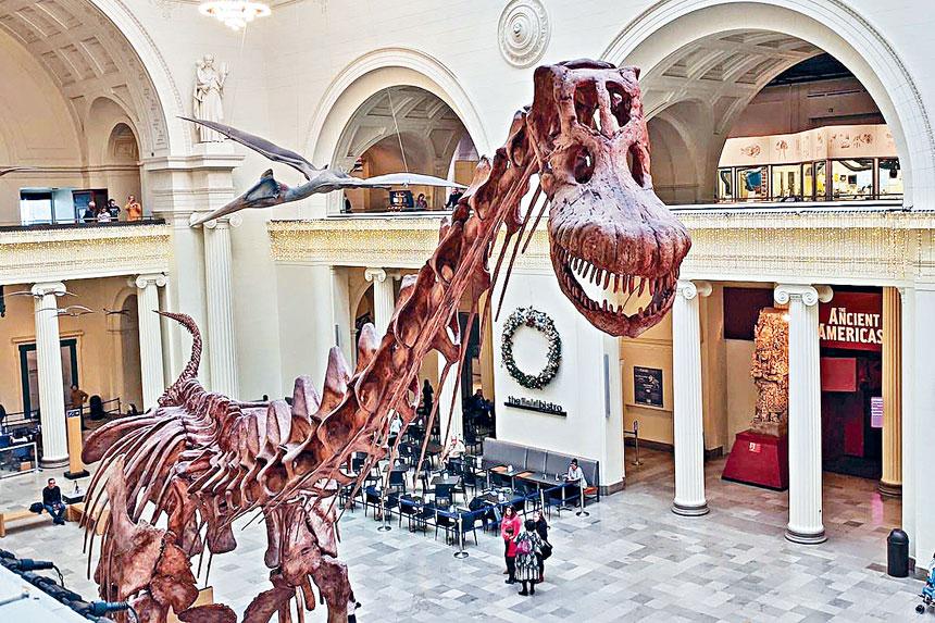 全球著名的大地博物館,收藏了世界最完整的暴龍化石「蘇」,吸引全球遊客前往欣賞。梁敏育攝