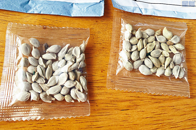 ■多個州的農業部門促請美國郵政局,停止派遞寄往全國的神秘種子包裹。部門懷疑神秘種子包裹,並非簡單的「刷屏」騙局。    路透社