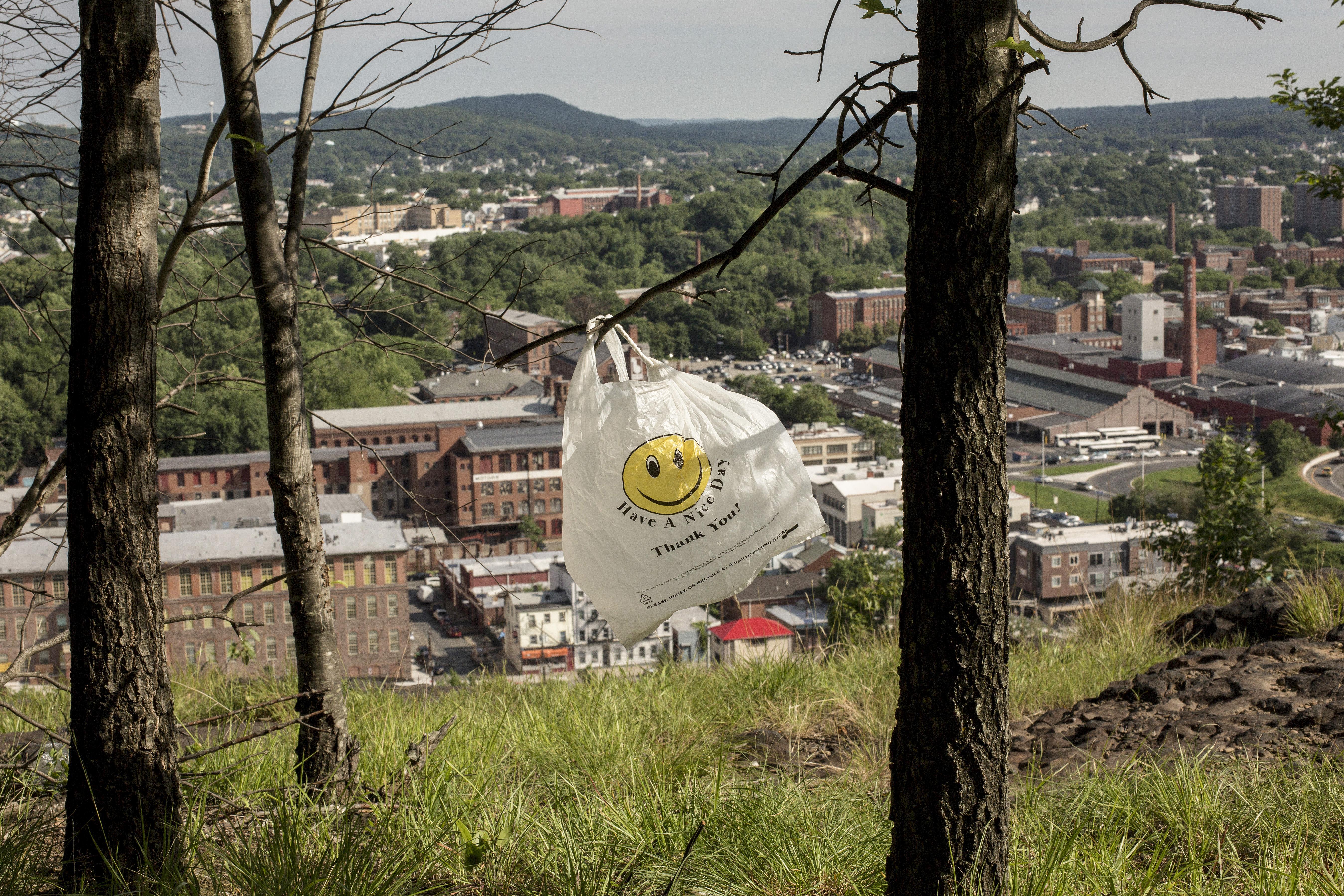新州州議會通過法案,設立全國最嚴膠袋禁令。 Bryan Anselm/紐約時報