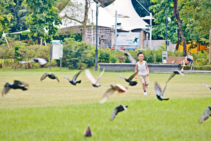香港連續四日無源頭不明個案,小朋友可以出外跑跑。