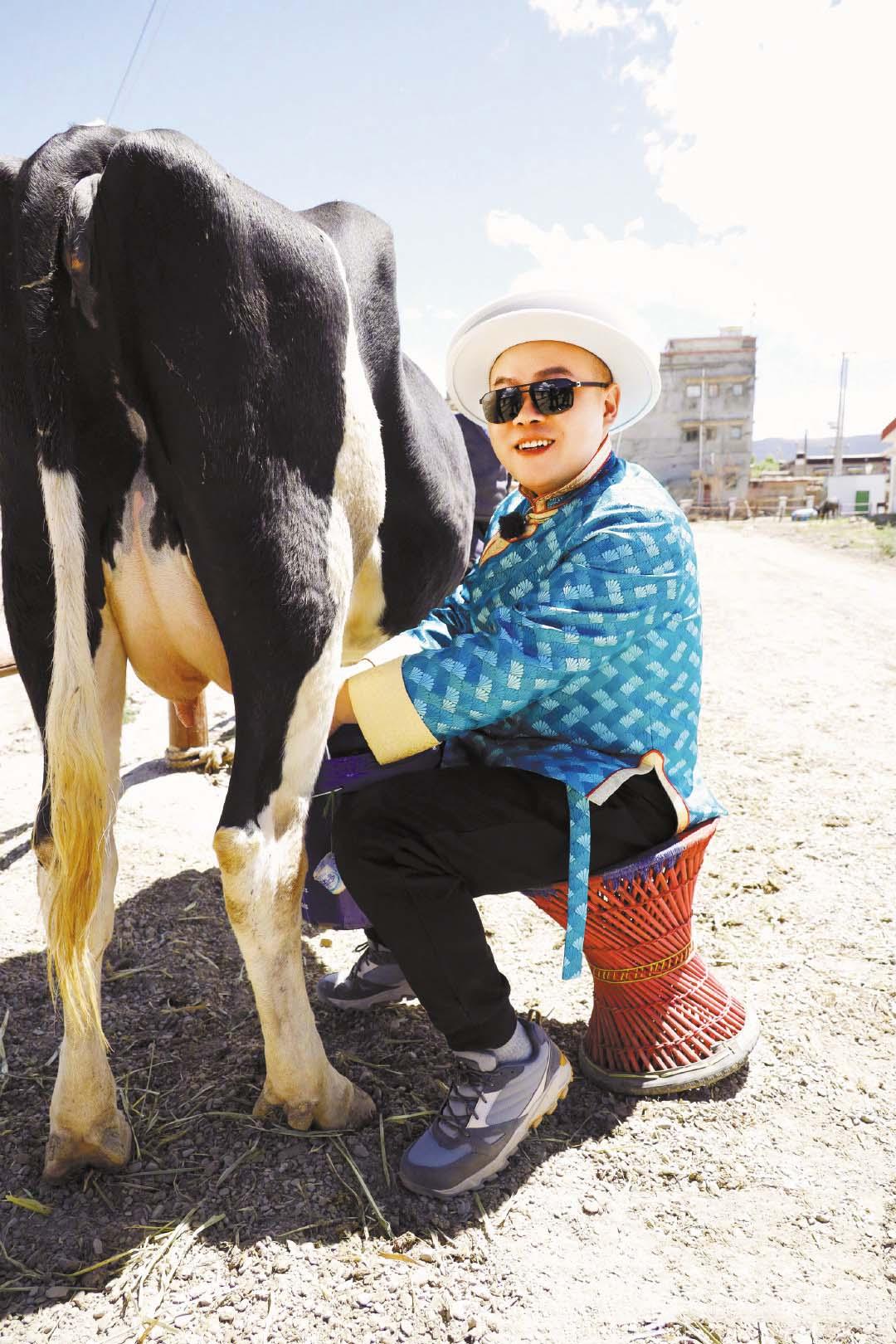 ■岳雲鵬在工作人員指導下學會擠牛奶。 網上圖片