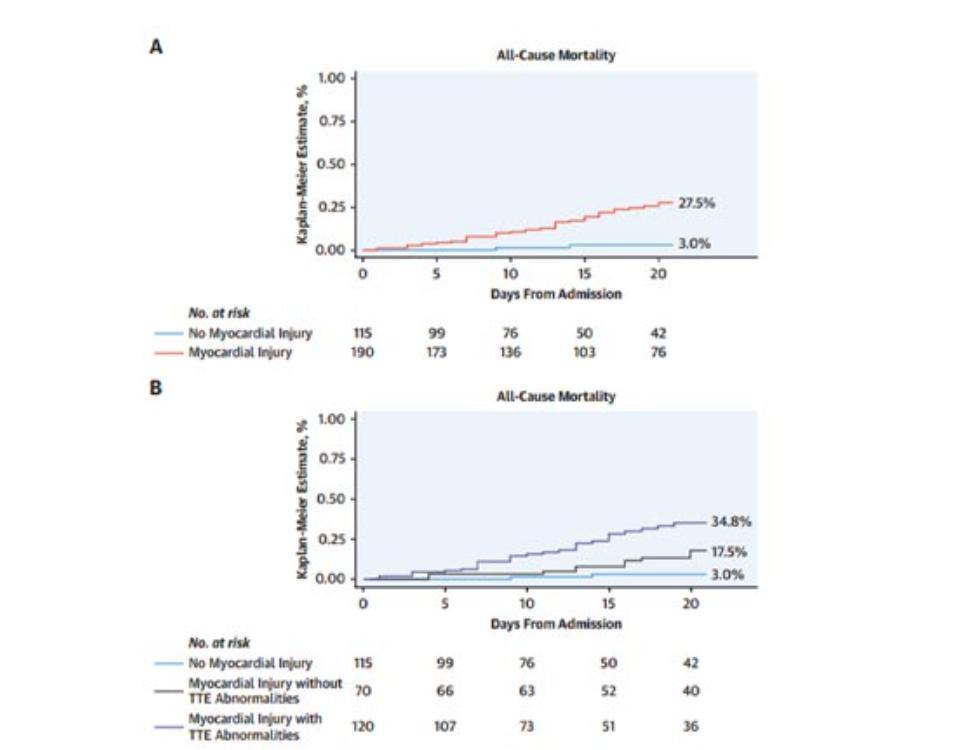 研究中心圖示,在接受過TTE的新冠患者中,近三分之二的心臟損傷患者存在心臟結構異常。