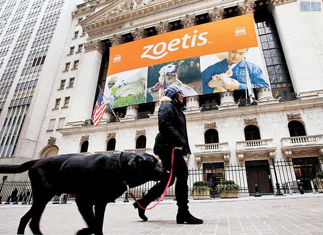 疫情期間居家辦公成為常態,寵物服務及藥品需求增加,激勵愛德士(Idexx Laboratories)及碩騰(Zoetis)股價大漲。資料圖片
