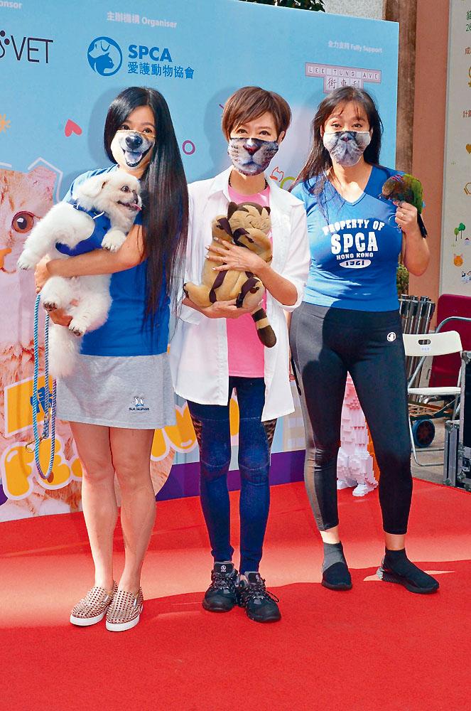 傅明憲、謝雪心、郭秀雲齊出席「情尋貓貓節」活動。