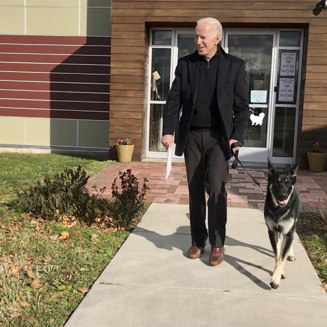 圖為拜登和他的德國牧羊犬「少校」(Major)。拜登和妻子共豢養兩隻狗。    美聯社