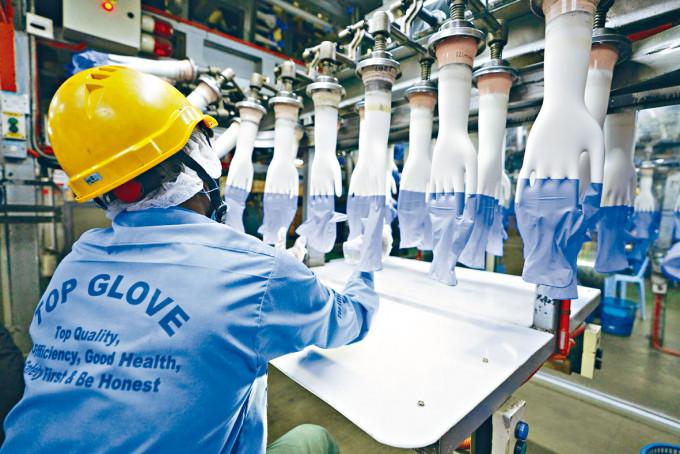 吉隆坡市郊的Top Glove手套廠八月時生產情況。