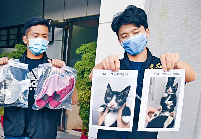 警方展示被偷幼貓及證物。