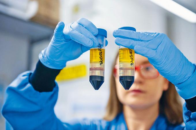 研究人員在牛津的實驗室試驗牛津疫苗。