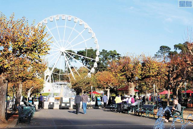金門公園內剛營業不久的巨型摩天輪29日起暫停營業。記者張曼琳攝