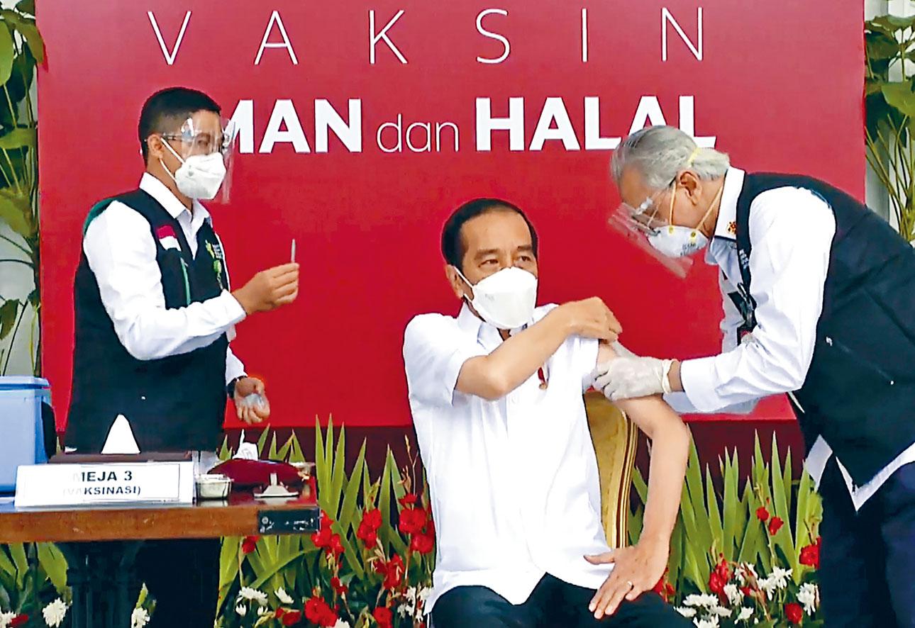 印尼總統維多多(中)13日在總統府準備接種科興疫苗。美聯社