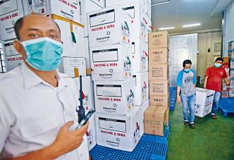 印尼棉蘭市工人搬動載有疫苗的箱子。