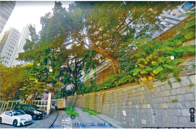 路政署計畫加密「兩周一檢」,並加設一個大型支架(綠色模型)鞏固。