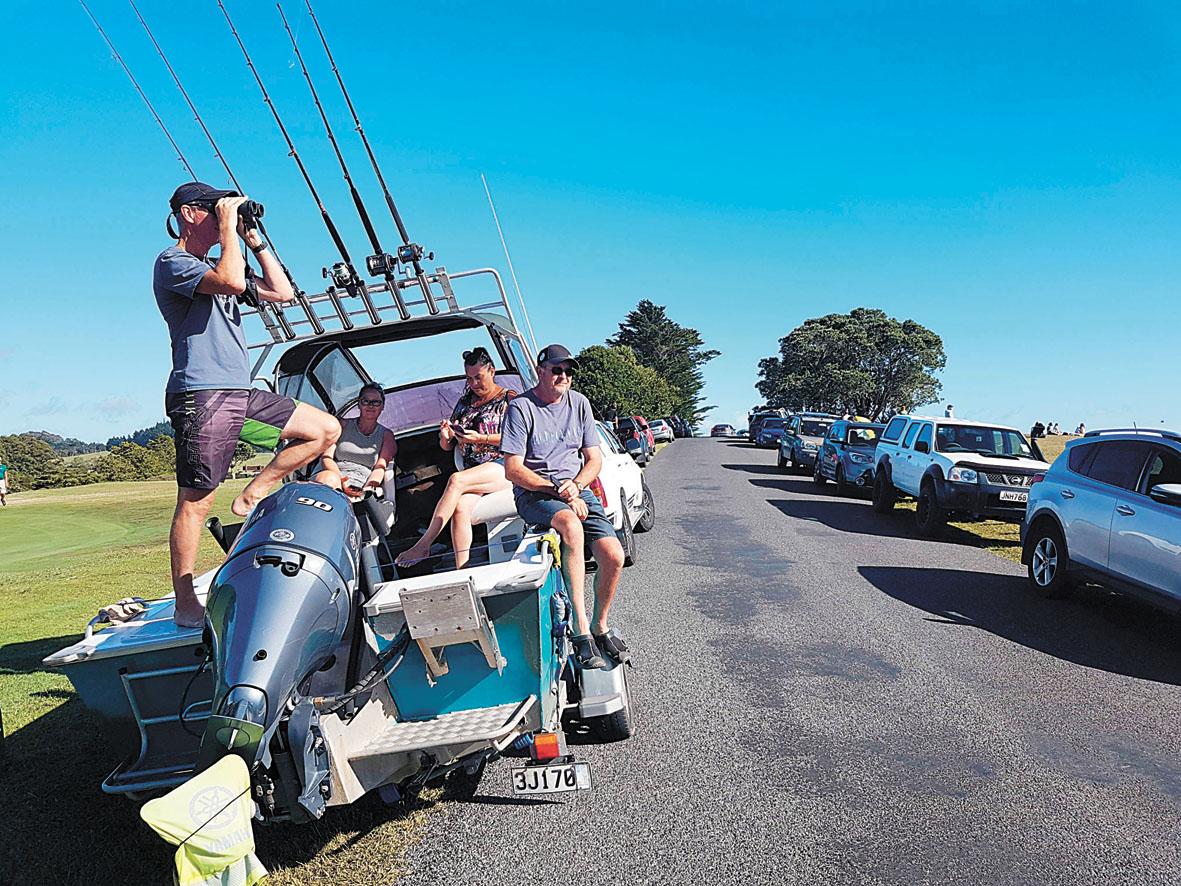 新西蘭民眾從高地觀察有否海嘯跡象。美聯社